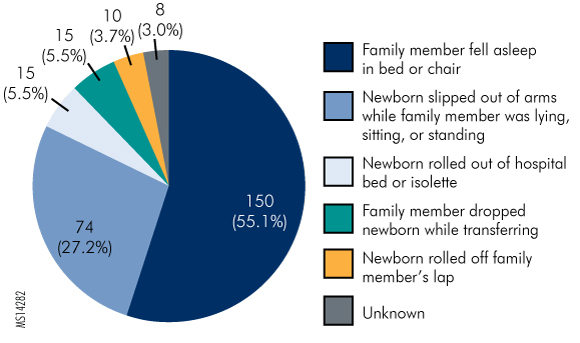 Figure 1. Reasons Newborns Fell While under Family Care,  July 2004 through December 2013, as Reported to PSA (N = 272)