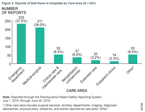 Figure 2. Reports of Self-Harm in Hospitals by Care Area (N = 621)